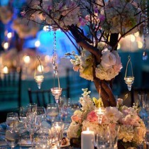 bodas (8)